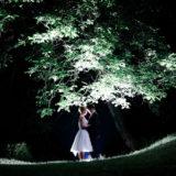 Hochzeitsfotograf Natur nachts